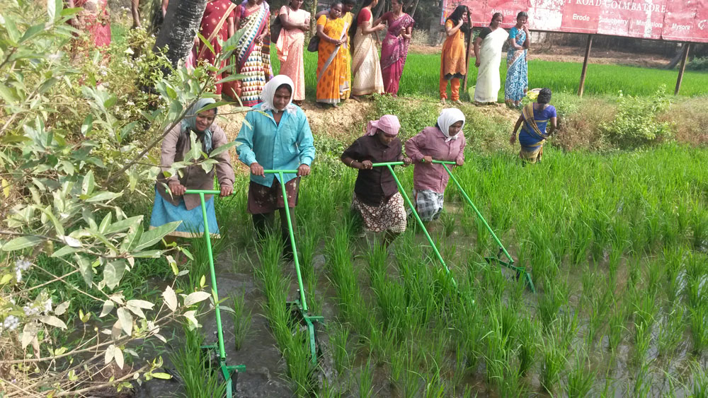 First Batch Conoweeder Training- Kuzhalmannam
