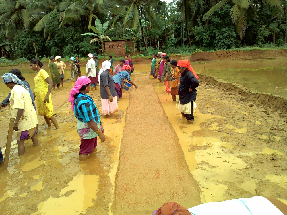 Kuttipuram - Mat Nursery Training
