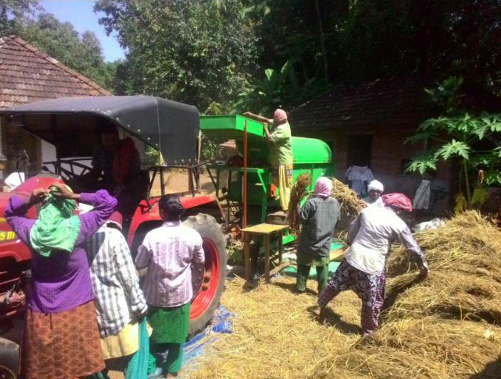 Wandoor Paddy Threshing